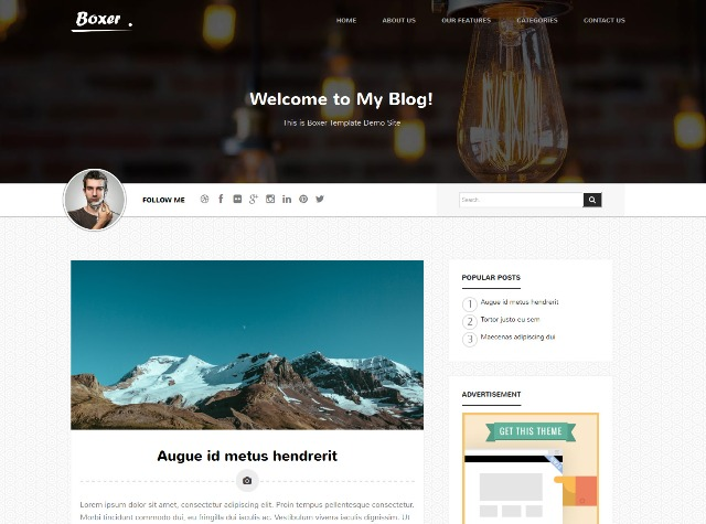 Boxer Personal Blogger Template