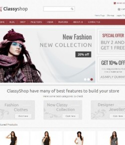 30+ Best eCommerce WordPress Themes