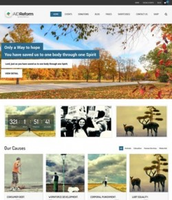 35+ Best Non Profit WordPress Themes