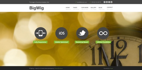 105+ Best Free and Premium Drupal Themes
