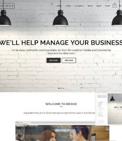 65+ Best Responsive WordPress Themes 2014