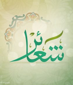 15+ Free Arabic Calligraphy Fonts