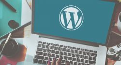 The Definitive Guide to Become a Top WordPress Developer