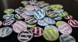 A Complete Guide to Install WordPress Plugins According To Your Need
